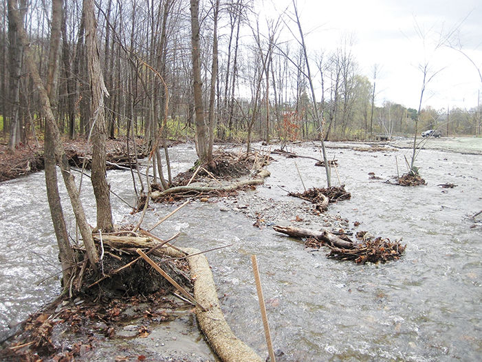 The floodplain renovation project on Beecher Brook
