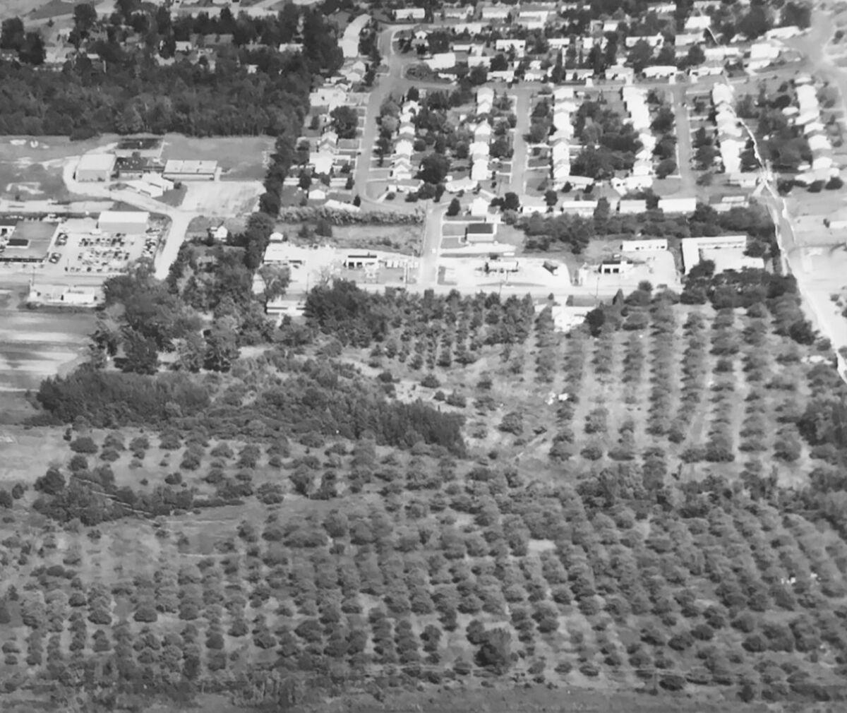Aerial photo of the Twin Orchard Park neighborhood in 1968