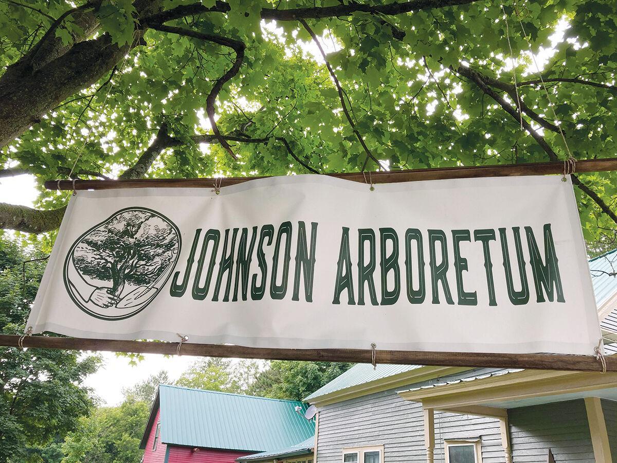 Johnson Arboretum