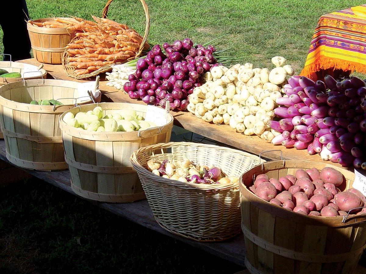Shelburne Farmers Market