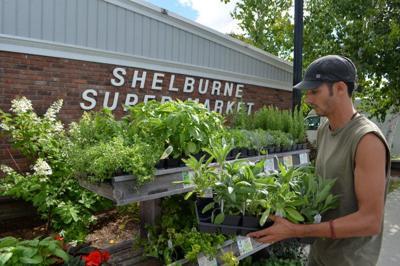 Aug 13 B Shel Supermarket S
