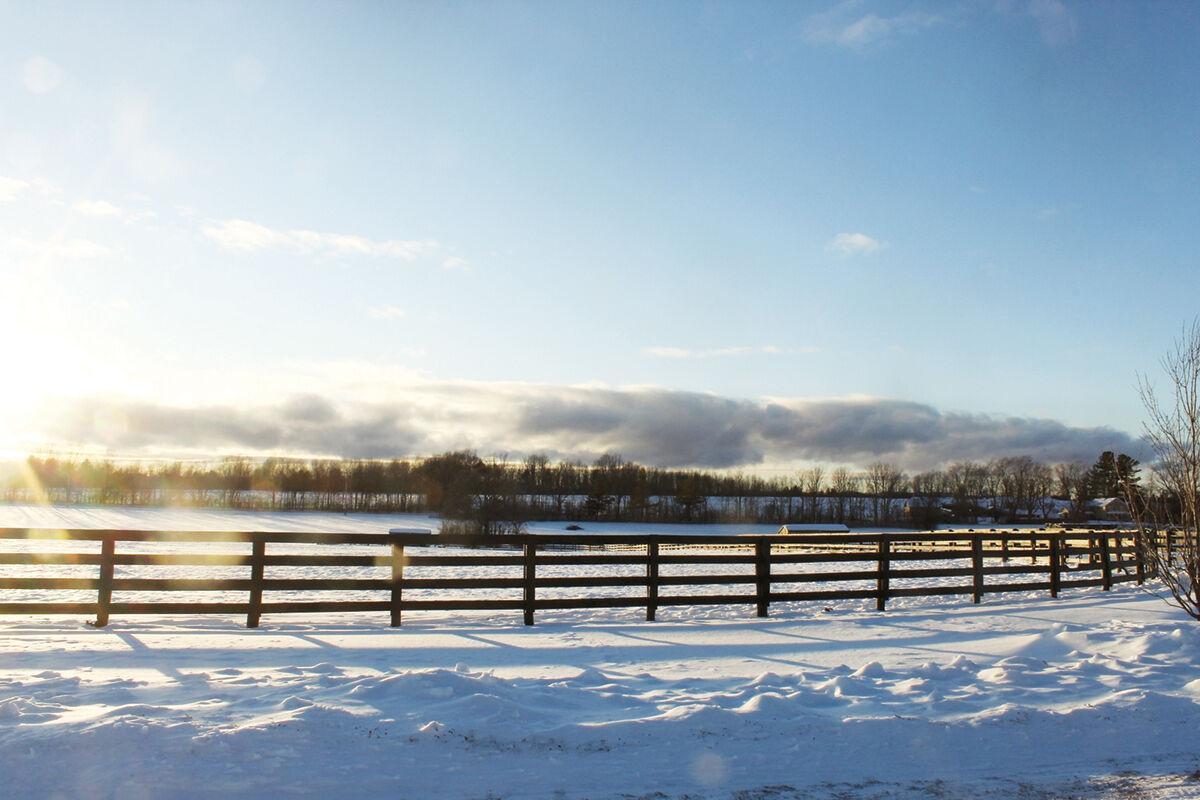 Cedar Spring Farm