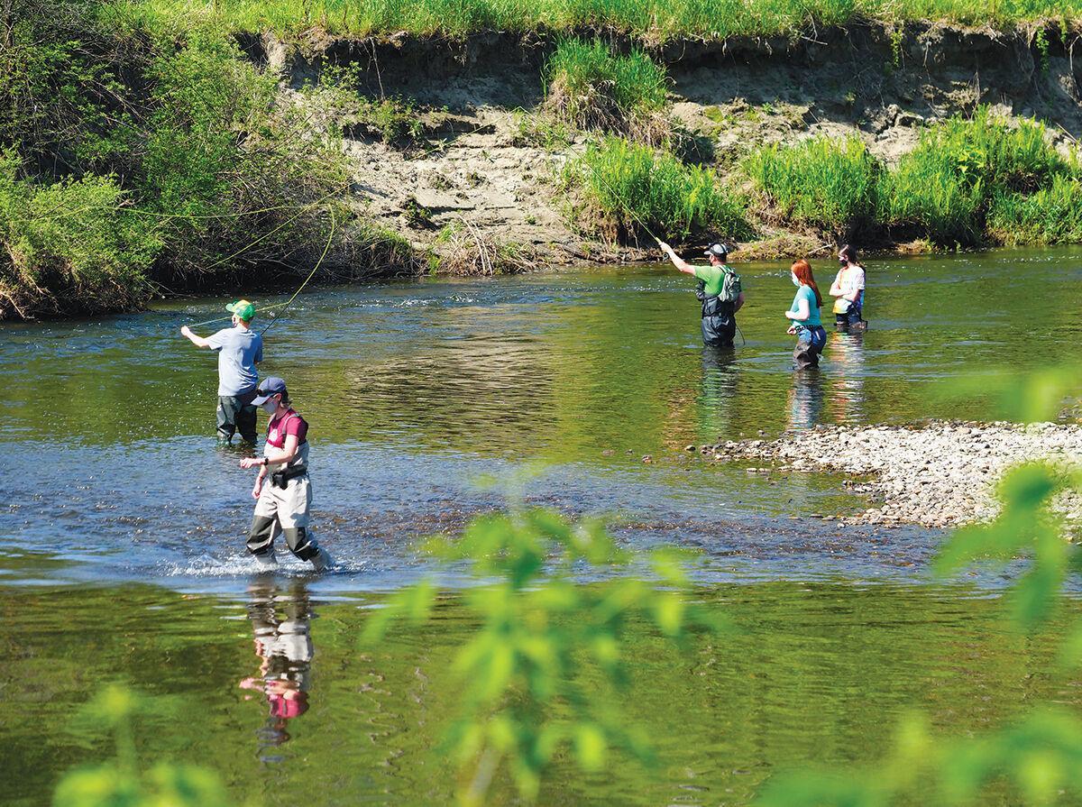 Lamoille River ecology