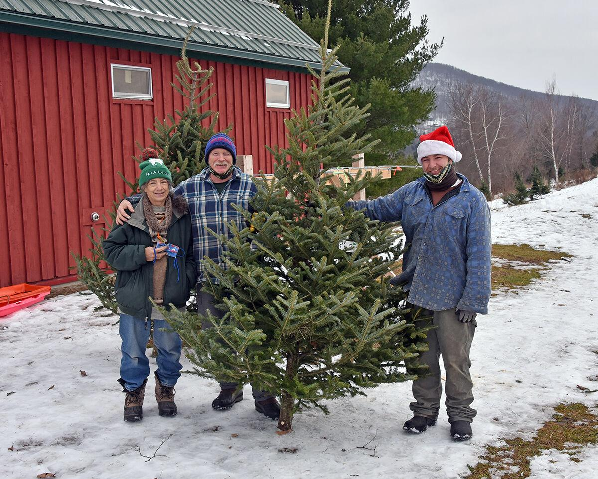 Christmas tree farmers see banner year