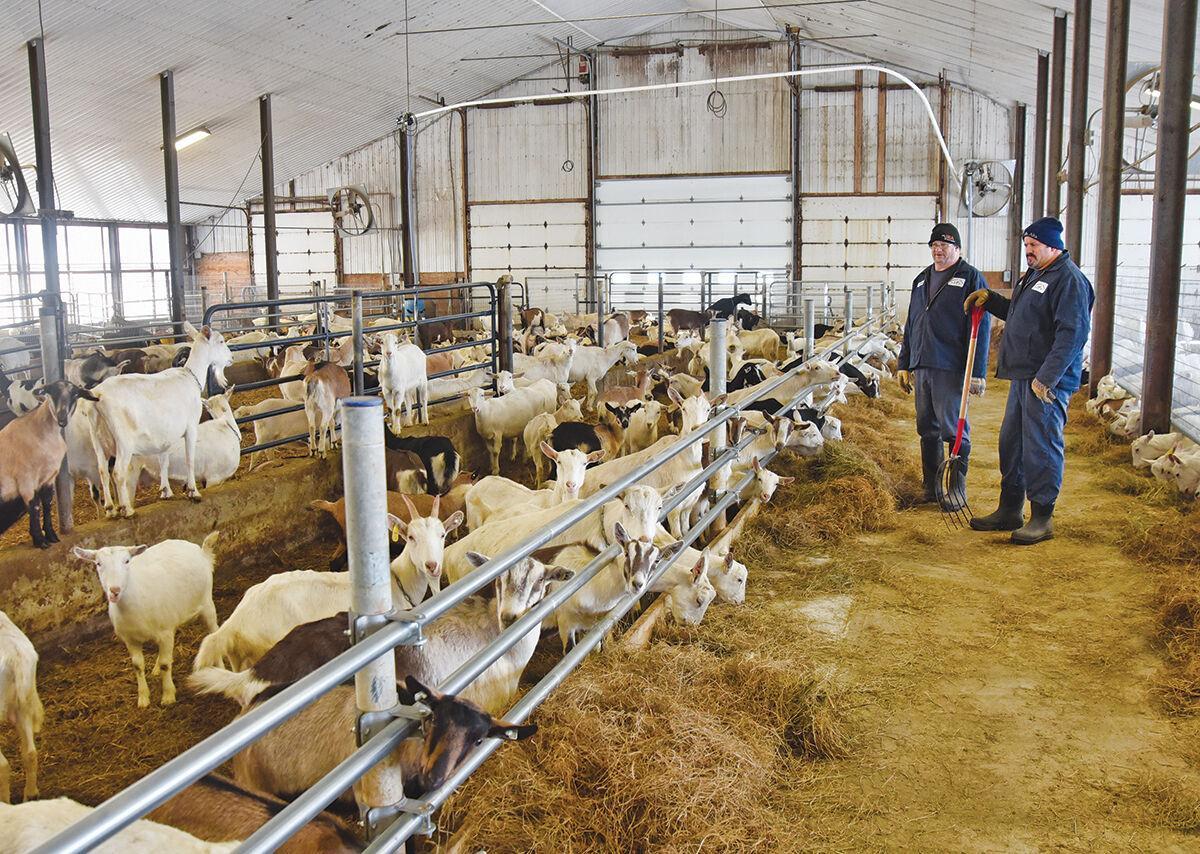 Joneslan Farm
