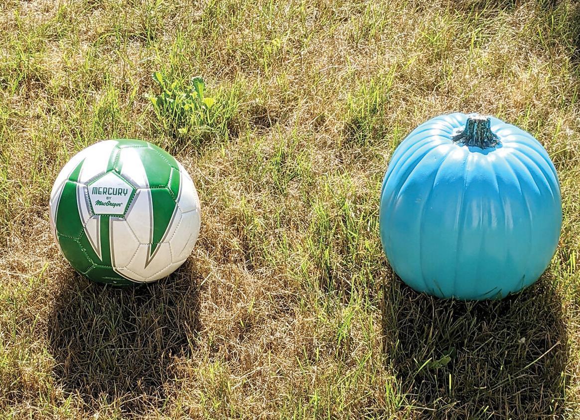 """A soccer ball and a pumpkin """"audition"""""""
