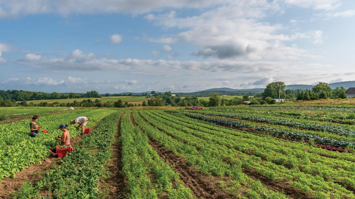 Group gifts millions to keep farming viable