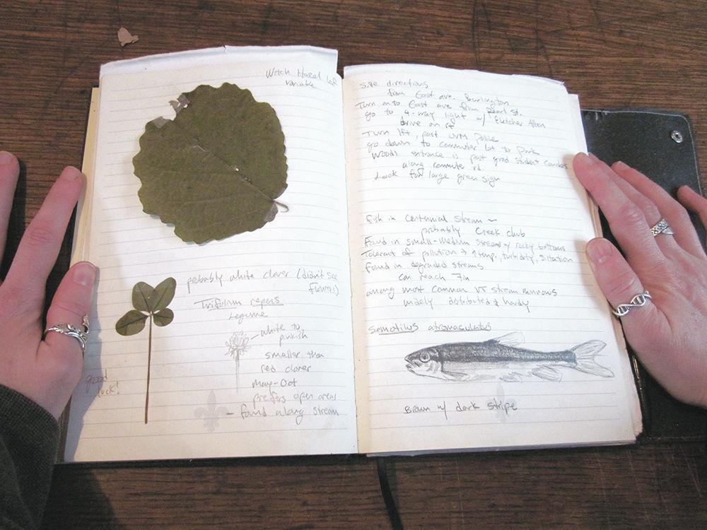 Nature Journaling exhibit