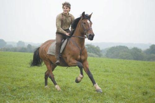 Carl Hoover Spielberg Film War Horse A Mixed Breed Access Waco Wacotrib Com