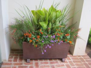 planters3