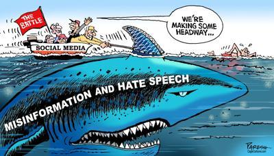 Sunday misinformation cartoon