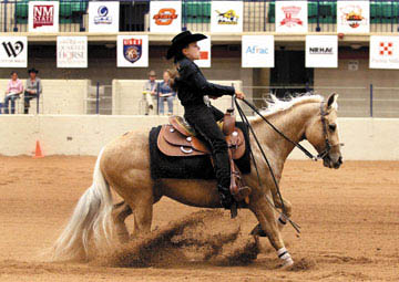 National Collegiate Equestrian Championship