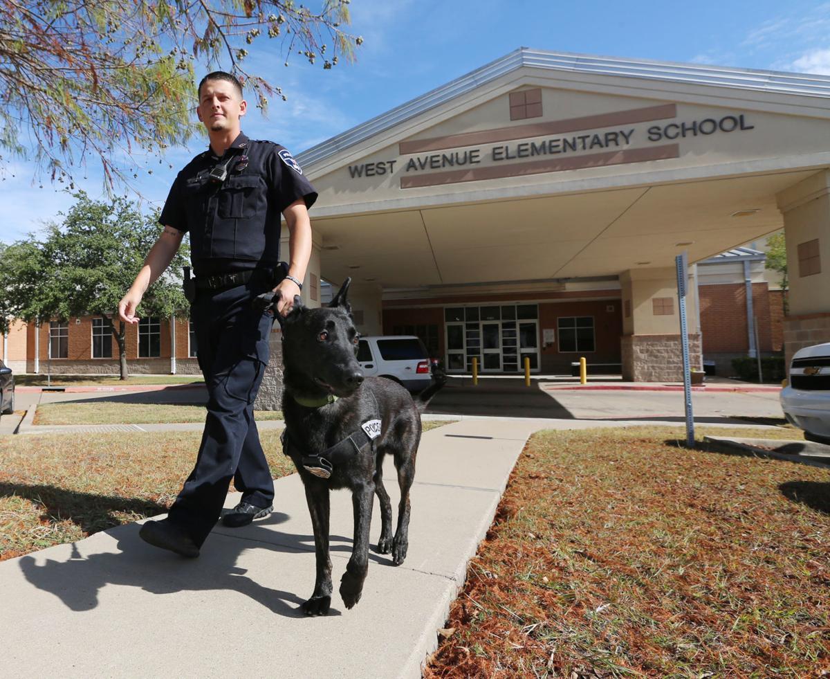 WISD police dog