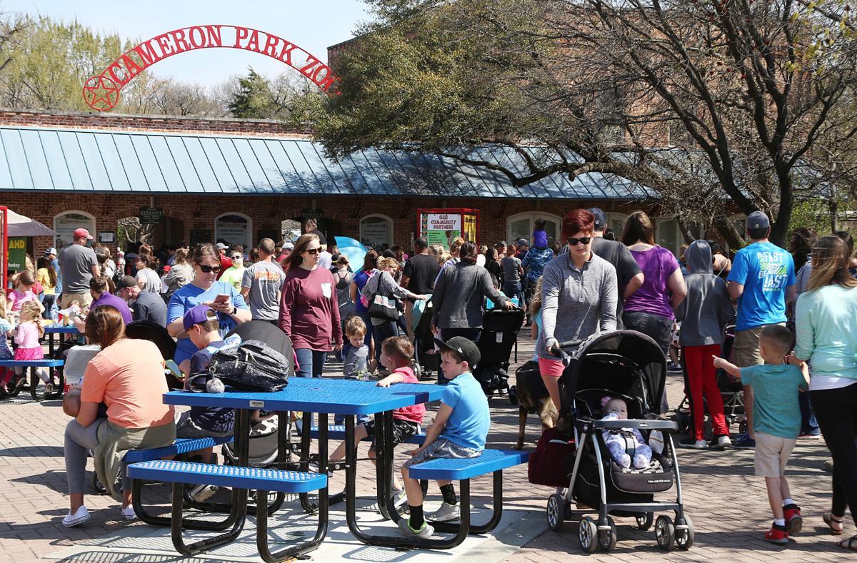 Cameron Park Zoo (copy)