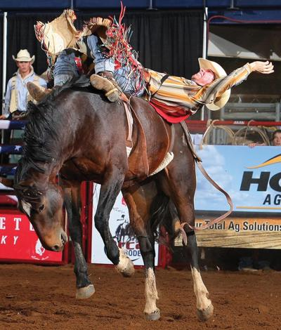 rodeo buck.jpg
