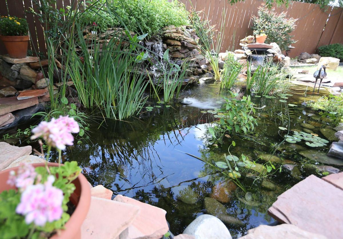 water garden society hosts tour of waco u0027s backyard ponds