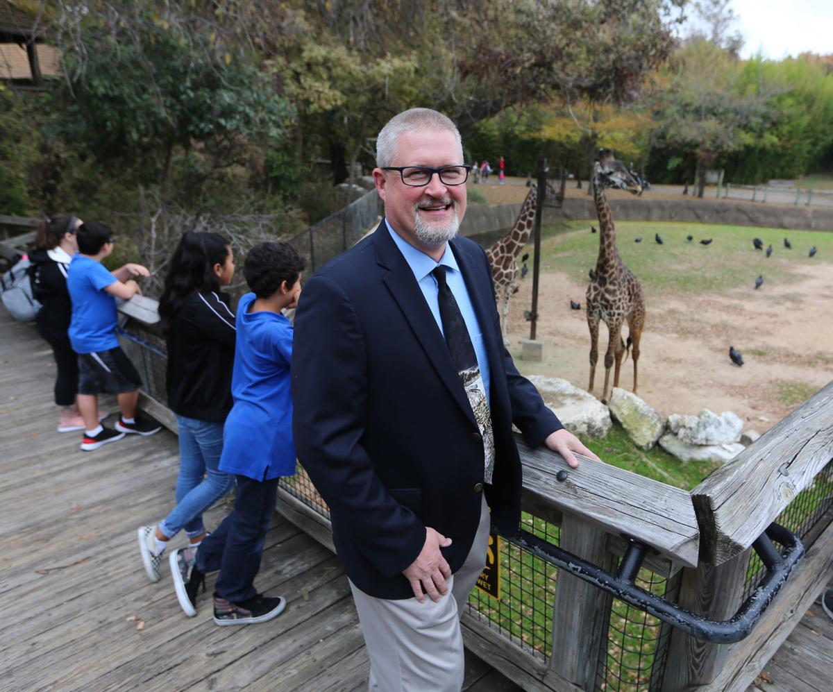 New zoo director
