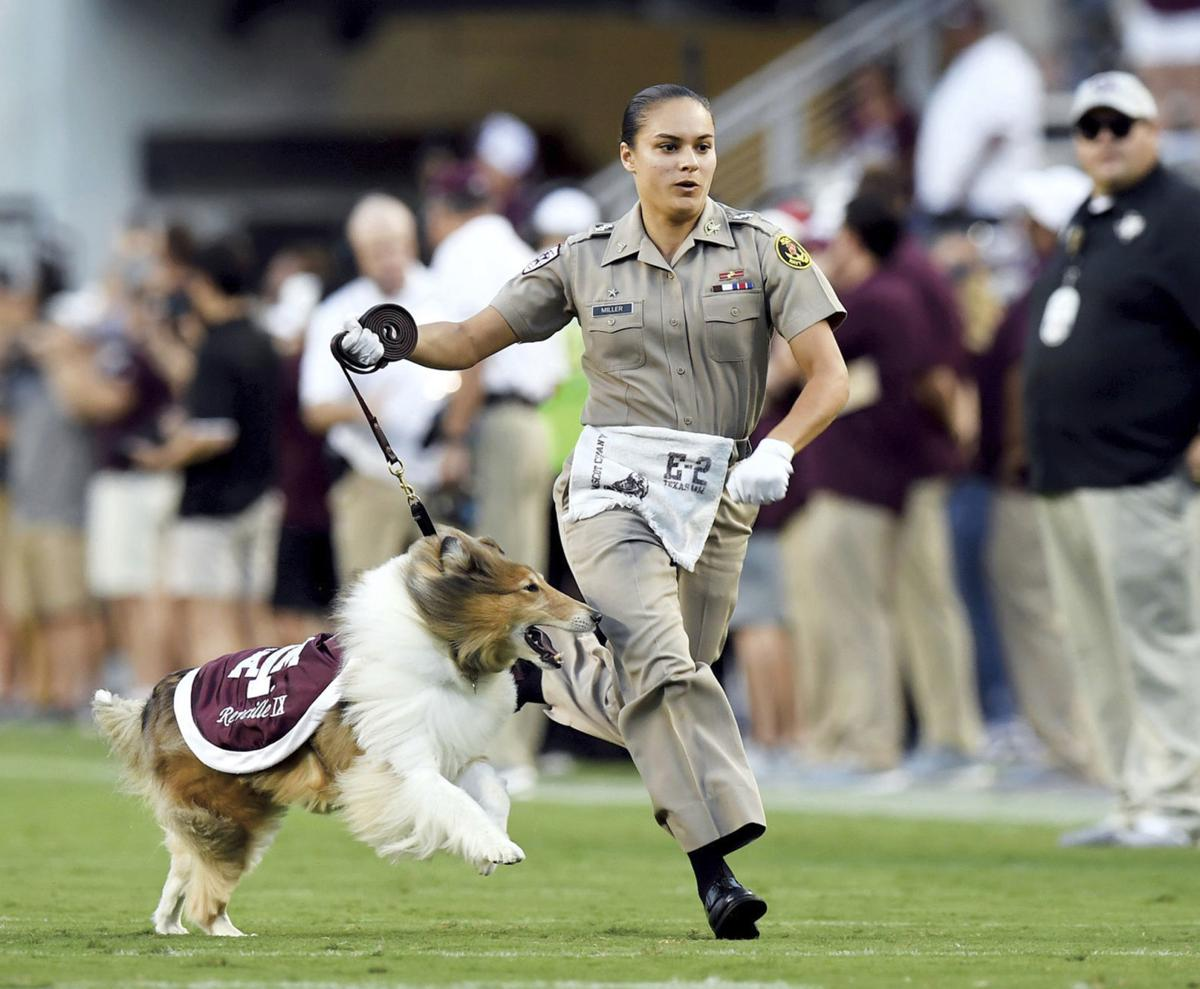 Exchange A and M Mascot Reveille