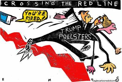 Polling cartoon