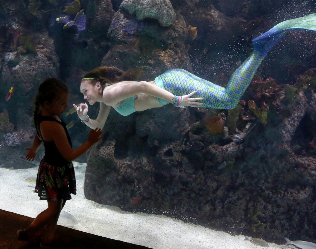 Cameron Park Zoo mermaids
