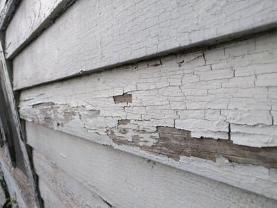 Lead paint (copy) (copy)