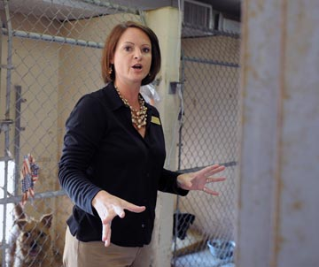 Humane Society director Gina Ford fired after sending email