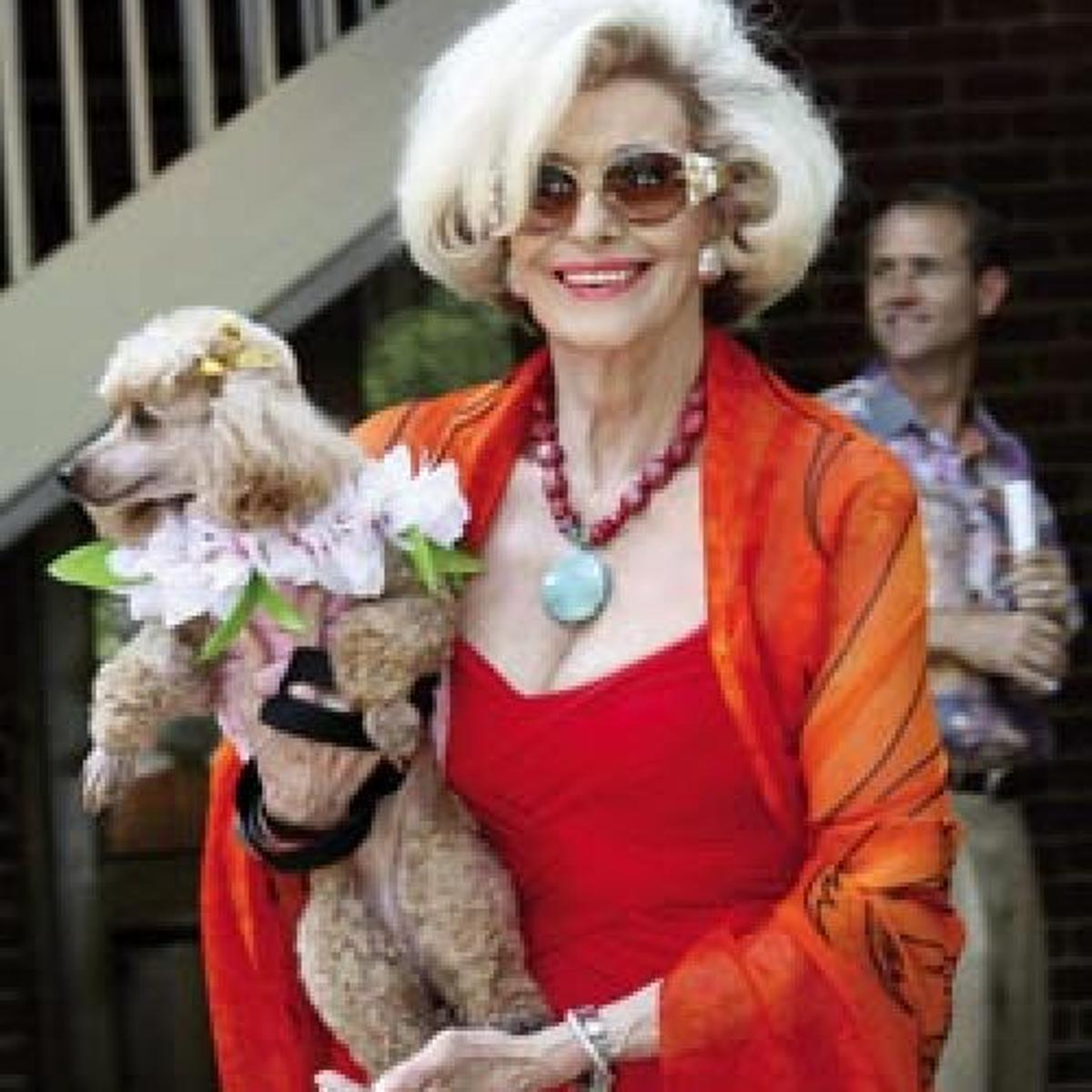 Dogs on the catwalk: Pooches on Parade style show to benefit