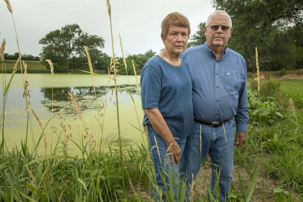 Contaminated pond
