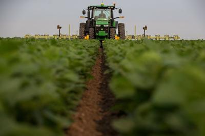 farm field  teaser