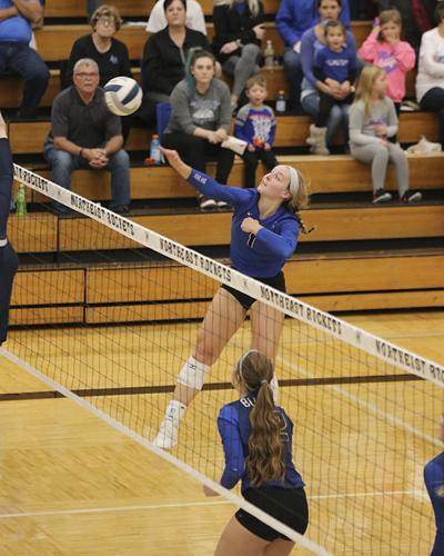 Bluejay volleyball