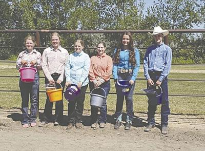 Wilkin County 4H Horse Project – Championship Bound