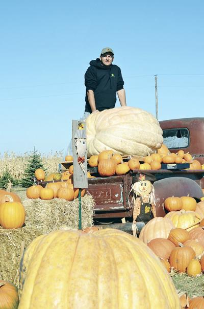 Kuzel's Great Pumpkin