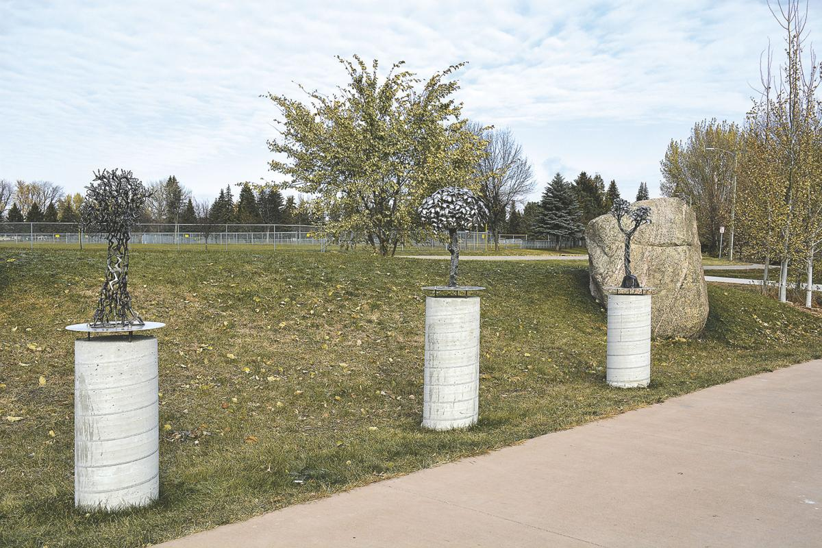 A few new trees in the park