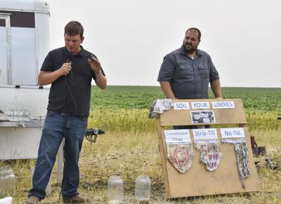 Wilkin County holds second annual Field Day