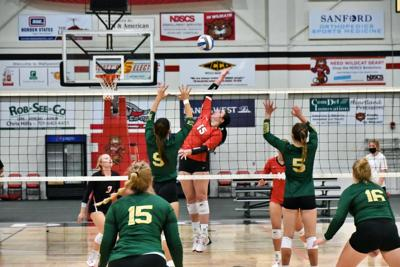 Mystics cast out 'Cats in 3-1 win