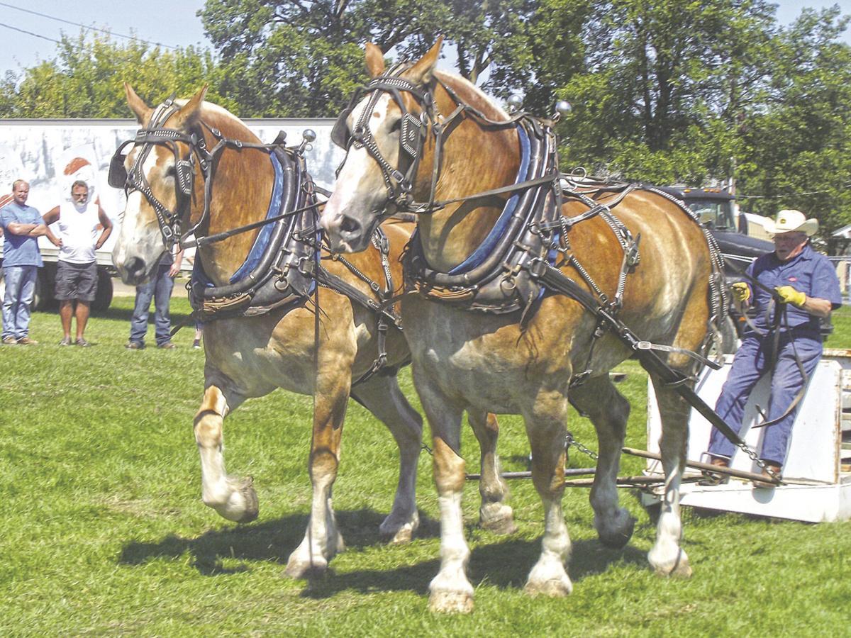 Horse pull