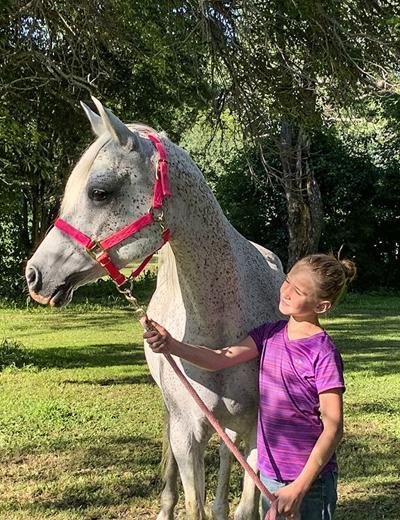 When good horses go bad