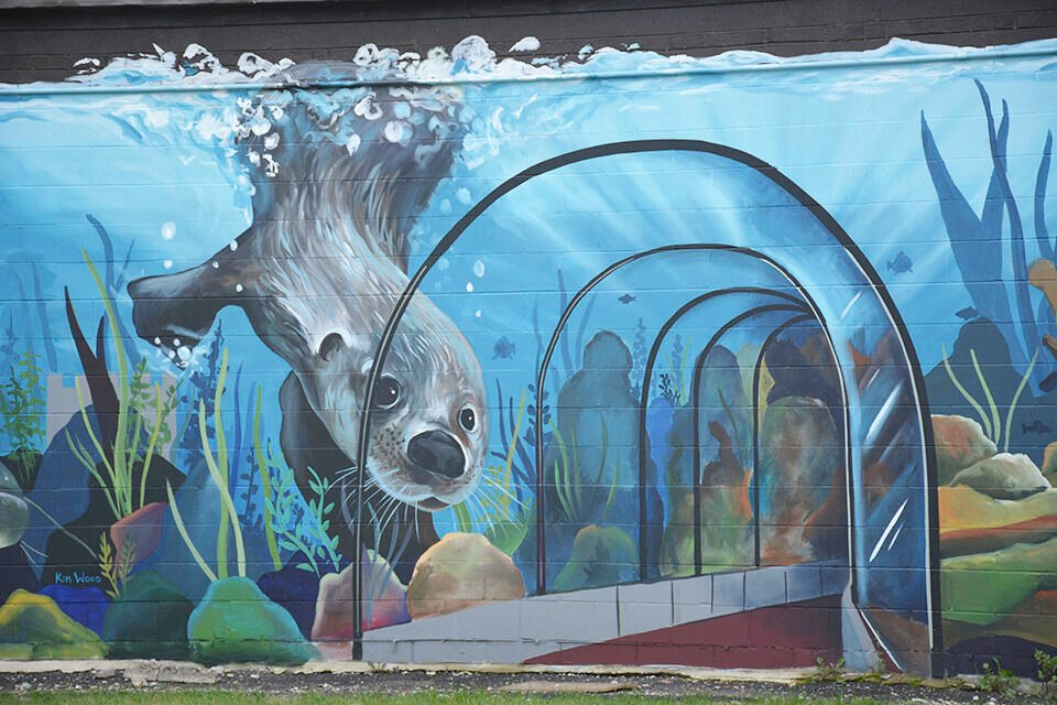 More to come with Wahpeton's new mural