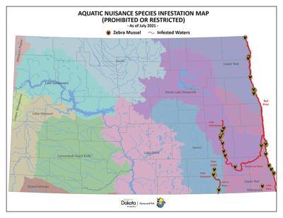 Zebra mussels found in Lake Elsie pose hazard to ecosystem