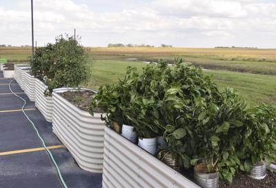The Farm at St. Francis receives $433k grant