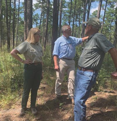 Westerman tours Pine-Bluestem Restoration project in Scott County
