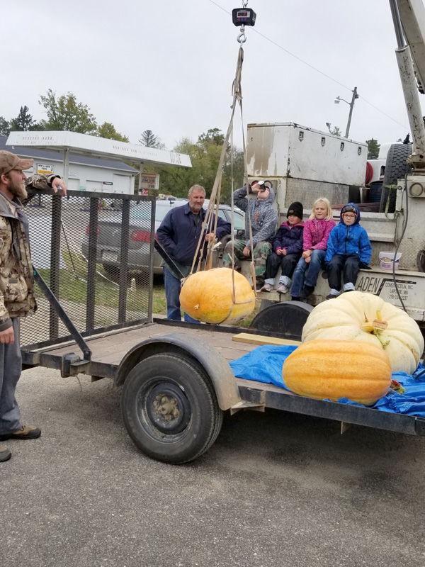 pumpkins-3.jpeg