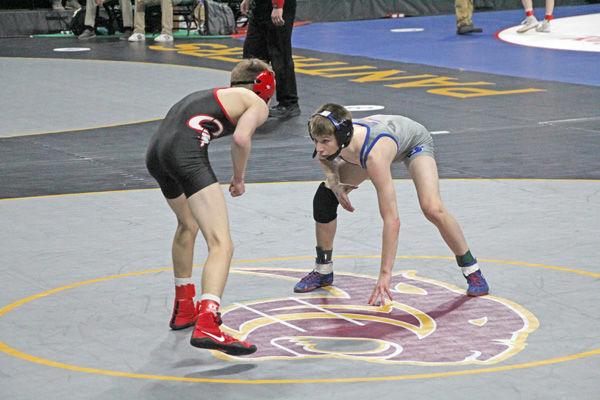 wrestling dawson-5