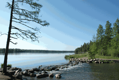 Headwaters of the Mississippi at Itasca State Park