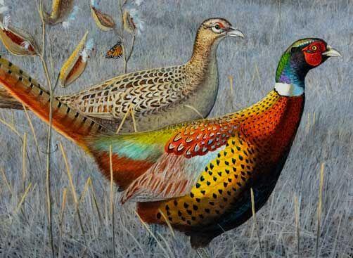 2021 Pheasant stamp