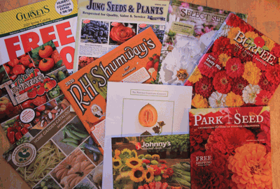 There vare many garden catalogs to choose from that offer many choices of beautiful flowers and scrumptious vegetable seeds or plants.