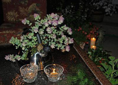 Scatter citronella oil and candles throughout outdoor entertainment areas and within a few feet of guests for short-term relief from mosquitoes.
