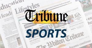Basketball roundup: Lions jump to 2-0 in region