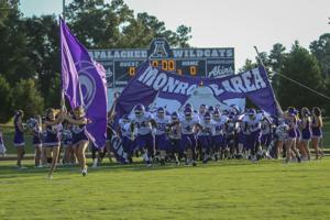 Monroe Area Football