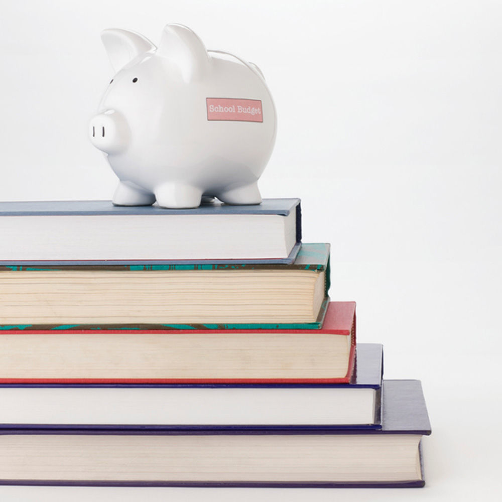 School budget proposals in